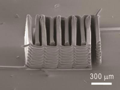 3D Printed Microbattery