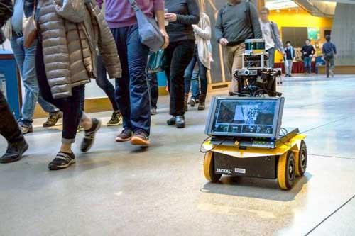 Robo-Pedestrian