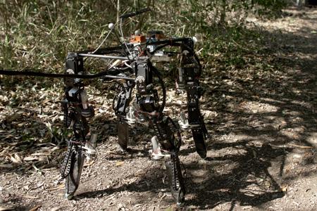 robot adapts the best possible body shape as it walks on rough terrain