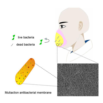 Schematic illustration of the use of multiaction antibacterial fibrous membranes as protective face mask