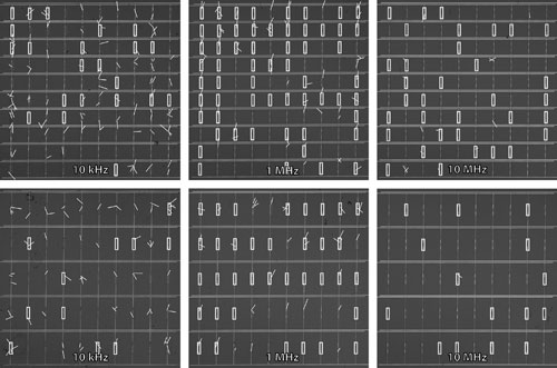 Optical microscope images of electrode arrays after dielectrophoretic alignment