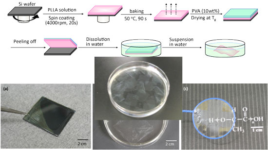 Preparation of PLLA nanosheets and appearance