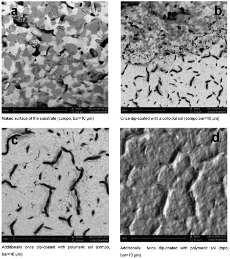 SEM images of a layer from a colloidal sol deposited onto a tape-casted substrate sintered at 1400C