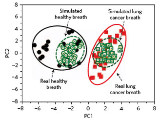 Principal component analysis (PCA) of the data set of real and simulated breath