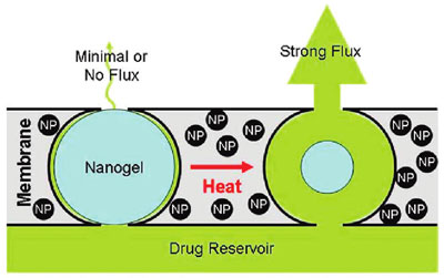 Stimulus-responsive drug delivery membrane triggering in vitro