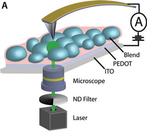 Optical microscope objectives