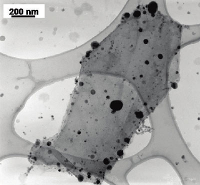 TEM image of titanium dioxide (smaller size) and silver (larger and darker) particles deposited on a single reduced graphene oxide sheet