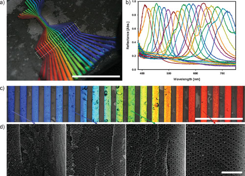 photonic crystal stripe patterns with 20 different bandgaps
