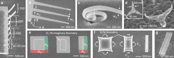 SEM images of the variation of curvature with varying widths showing that nanostructures with both homogeneous and varying radii of curvature can be self-assembled