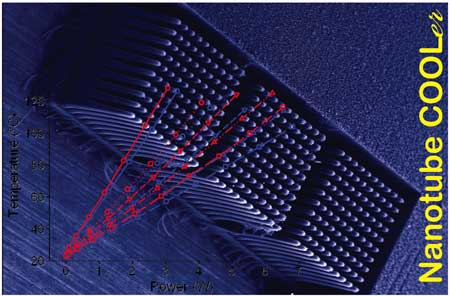 Field emission scanning electron microscopy image of a carbon nanotube fin array block