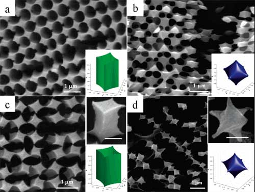 SEM images of the experimental structures