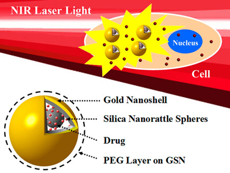 A drug-loaded structure comprising a PEGylated (PEG=polyethylene glycol) gold nanoshell on silica nanorattle spheres