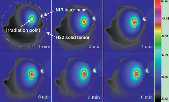Infrared thermal images of an excised pGSNs-injected H22 solid tumor sample at different time points under NIR laser irradiation