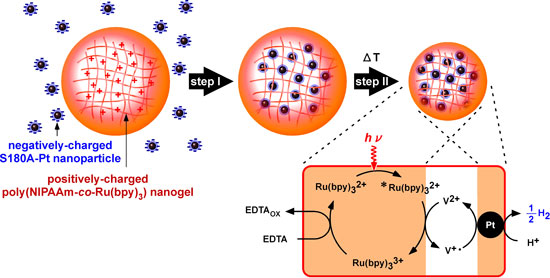 Integration mechanism for platinum nanoparticles and a nanogel