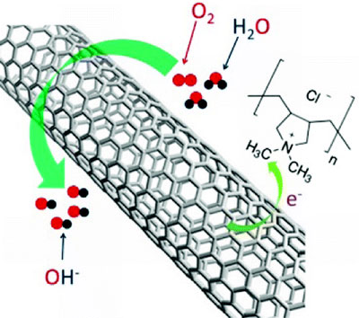 Having a strong electron-withdrawing ability, poly(diallyldimethylammonium chloride) (PDDA) was used to create net positive charge for carbon atoms in the nanotube carbon plane via intermolecular charge transfer