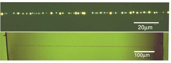 Optical microscopy images of CNT/TiO2 strings