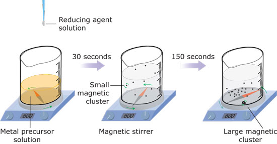 Synthesis of Magnetic Noble Metal Nanoparticles