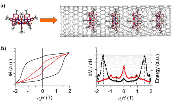 Schematic diagram of Mn12Ac single-molecule magnet encapsulation in carbon nanotube