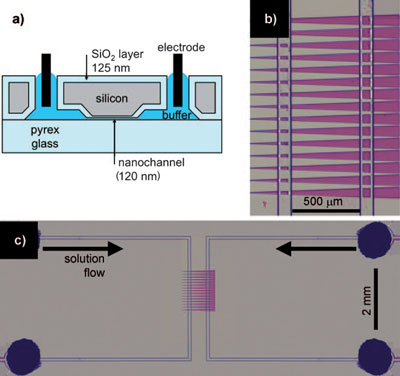 Separation of Proteins in a Nanochannel