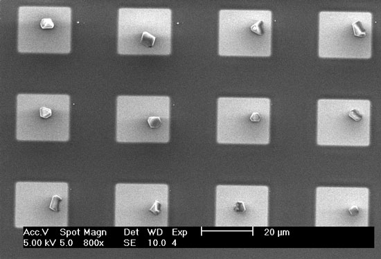 SEM image of an array of single HKUST-1 crystals that were printed in hydrophilic micropatches