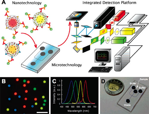 Diagnostic scheme for integrated nano-micro detection platform