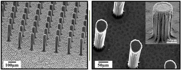 Scanning electron microscope image of three-dimensional graphene encrusted carbon micropillar arrays