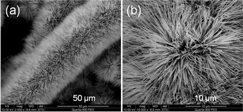 Co3O4 nanowires with brush-like morphology