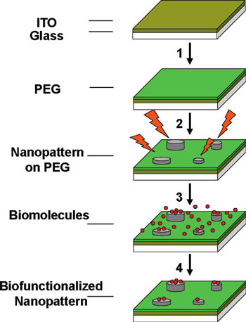 EBID-process sequence employed for the generation of biomolecular nanopatterns