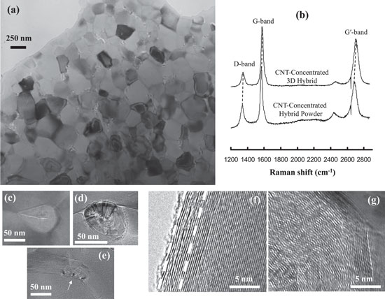 multi-walled carbon nanotubes in hybrid powder