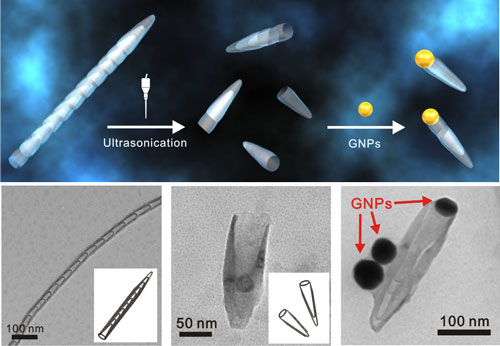 Nanoparticle-corked carbon nanotubes as drug delivery vehicles