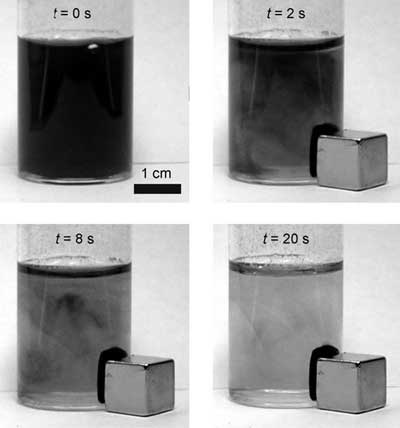Separation of cobalt nanoparticles from a suspension with a magnet