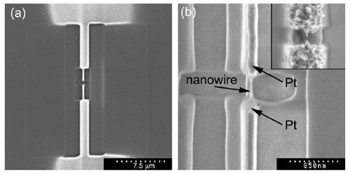 FIB image of platinum deposited nanoelectrodes after fabrication