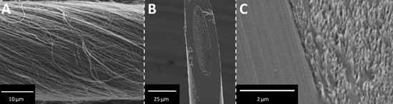 carbon nanotube yarn electrode