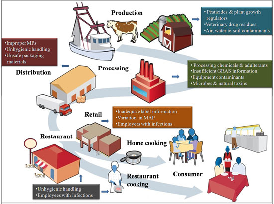 Nanotechnology In Food Quality Control Preventing Food