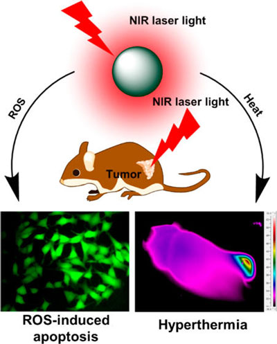 new tech for photodynamic therapy essay 1 spatio-temporal phase respectively several new calibration tech- as an example of this we can look at photodynamic therapy,2 wherein cancer cells are.