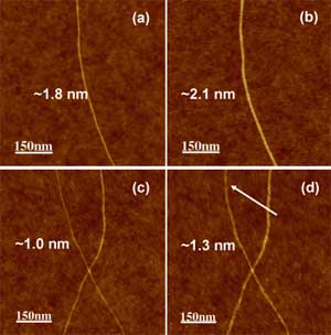 AFM images carbon nanotubes before and after hydrogenation