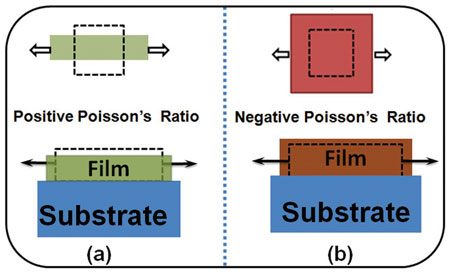 Schematic illustrations of positive and negative Poisson's ratios