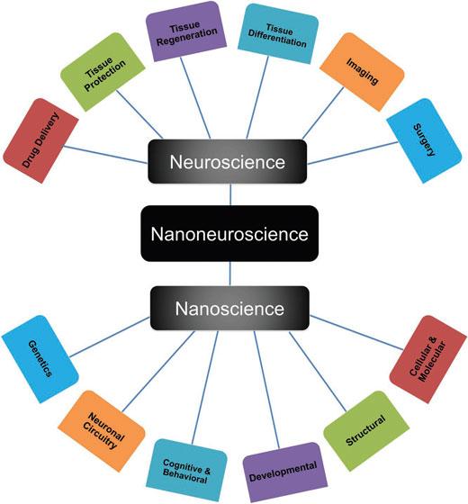 Nanotechnology for neuroscience