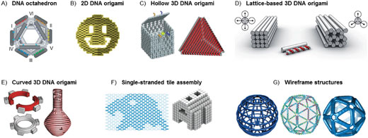 DNA origami and beyond
