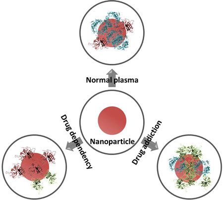 Potential nanotechnology applications in combating opioid
