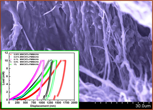 carbon nanotube reinforced PMMA/hydroxyapatite composite