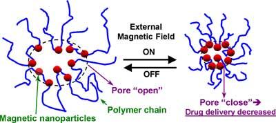 hydrogels for drug delivery pdf