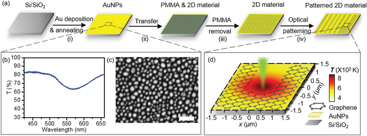 Opto-thermoplasmonic patterning of 2D materials