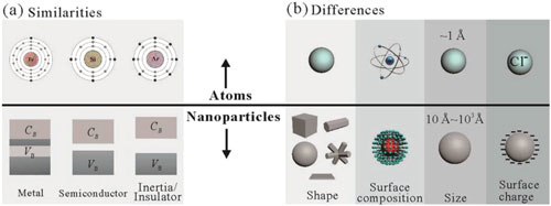 Similarities and differences between atoms and nanoparticles