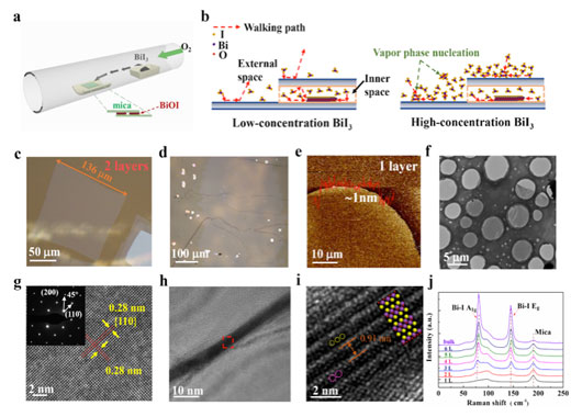 Lattice structure and growth of layered BiOI nanosheets