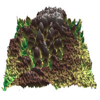 3d_surface_potential_image