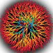 phytoglycogen-nanoparticle