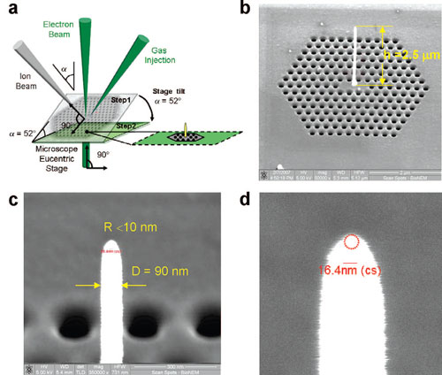 surface-enhanced nanosensor device