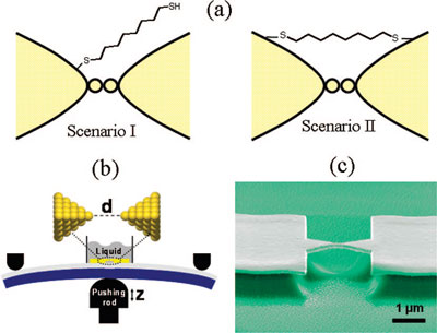 single atom contact with molecular bridge formation