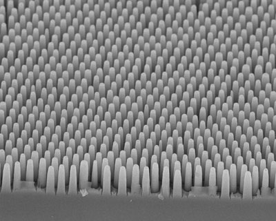 Templated silicon pillar arrays